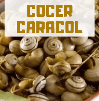 COMO COCER CARACOLES